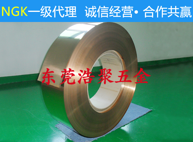 NGK进口铍铜带厂家